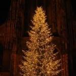 クリスマスツリーの意味!日本ではいつ始まった?!