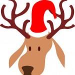 鹿とトナカイの違い!サンタのソリを引く理由とは!?